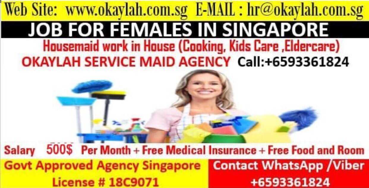 Punjabi Maid Agency Services